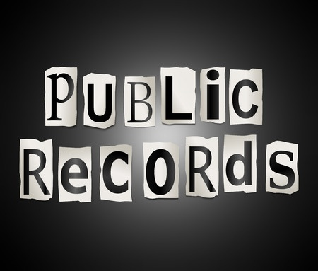 Image result for public records